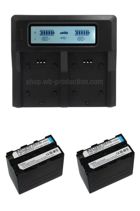 Power Set: 2 pcs batteries & LCD charger